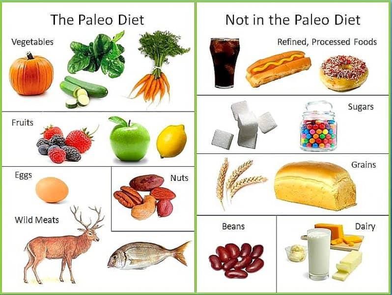 paleo-diet food